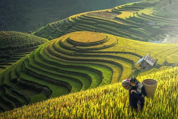 Sapa, Vietnam Reiseziele